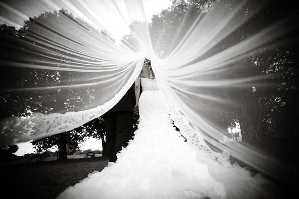 under-the-veil-photo
